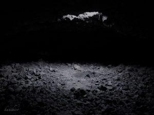 ケイヴクレイフィッシュ 洞窟