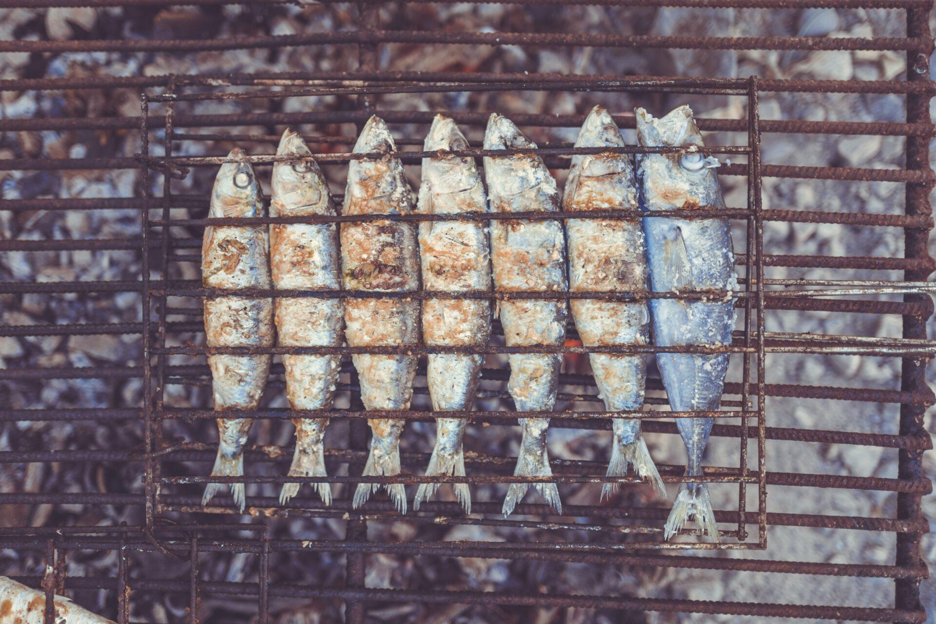 アマゴの値段と旬やお取り寄せ情報まとめ!生息地やヤマメとの味の違いとは?